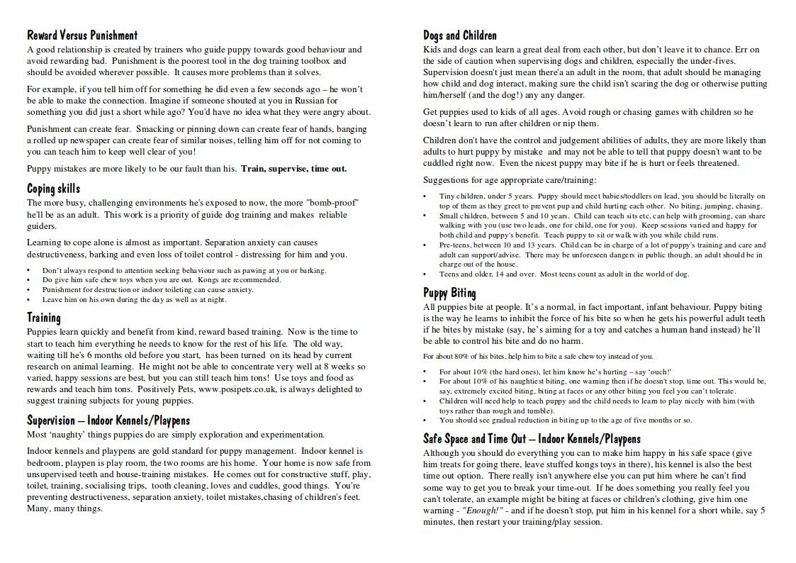 Petspy Dog Training Instructions Pdf